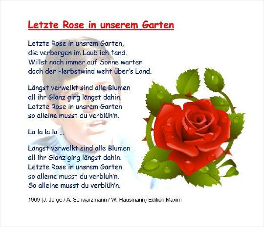 letzte rose heintje